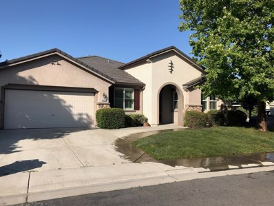10313 Braga Court, Elk Grove, CA 95757 - MLS#: 18030433