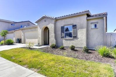 1243 Cornflower Drive, Patterson, CA 95363 - MLS#: 18030505