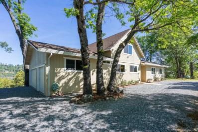 5181 Shooting Star Road, Pollock Pines, CA 95726 - MLS#: 18030881