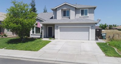 6582 Cal Bears Court, Winton, CA 95388 - MLS#: 18031002