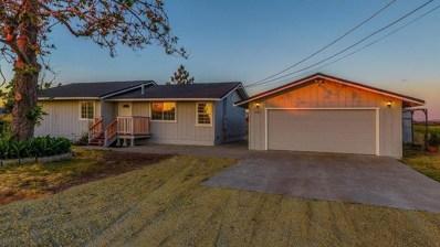 1936 Village Drive, Ione, CA 95640 - MLS#: 18031317