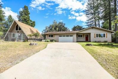 23050 Alaire Lane, Pioneer, CA 95666 - MLS#: 18031353