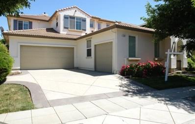 376 Carroll Street, Mountain House, CA 95391 - MLS#: 18031409