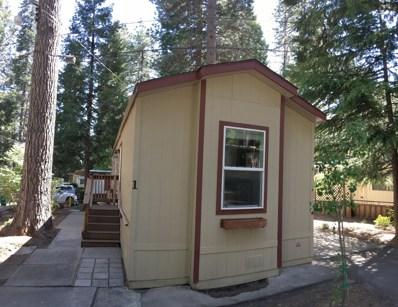 5840 Pony Express Trail UNIT 1, Pollock Pines, CA 95726 - MLS#: 18031612