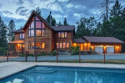 22870 Tree Farm Rd, Colfax, CA 95713 - MLS#: 18032034