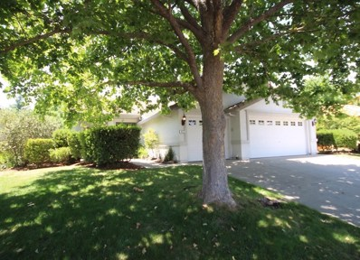 117 Austen Court, Roseville, CA 95747 - MLS#: 18032661