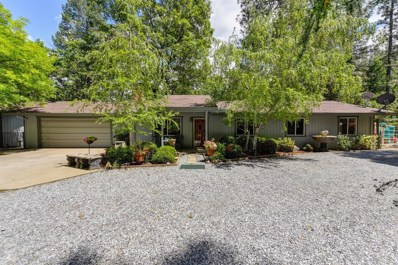 3981 Frog Hollow Drive, Placerville, CA 95667 - MLS#: 18032837
