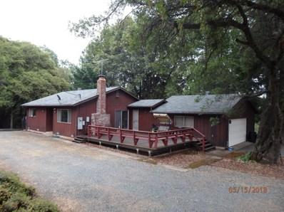 12691 Irishtown Road, Pine Grove, CA 95665 - MLS#: 18033059