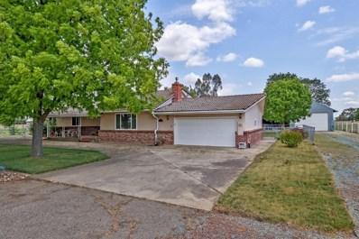 23180 N Tretheway Road, Acampo, CA 95220 - MLS#: 18033065