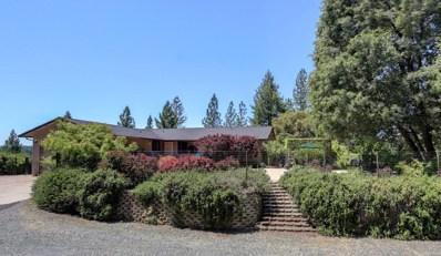 22990 Pine Hollow Road, Colfax, CA 95713 - MLS#: 18033106