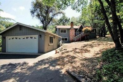 21269 Curtis Creek Court, Sonora, CA 95370 - MLS#: 18033298