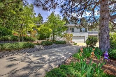 3581 Camino Hills Drive, Camino, CA 95709 - MLS#: 18033344