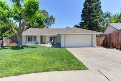 5254 Phoenix Ridge Place, Fair Oaks, CA 95628 - MLS#: 18033749
