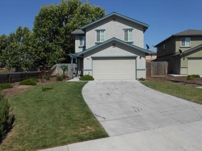 355 Pedersen Road, Oakdale, CA 95361 - MLS#: 18034029