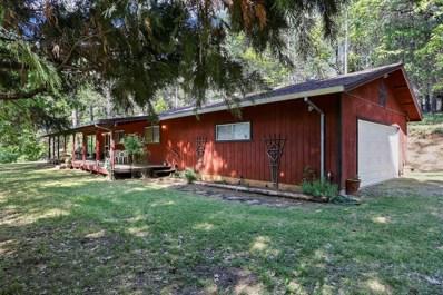 339 Black Oak Drive, Mokelumne Hill, CA 95245 - MLS#: 18034056