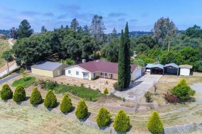5300 Old Timer Lane, El Dorado, CA 95623 - MLS#: 18034436