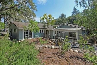 14272 Torrey Pines Drive, Auburn, CA 95602 - MLS#: 18034492