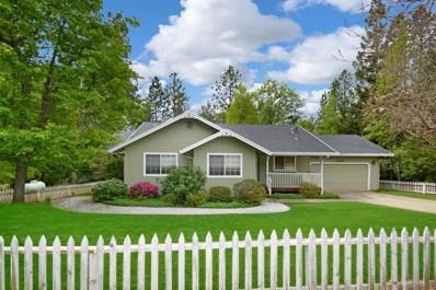 22190 Valley View Court, Pine Grove, CA 95665 - MLS#: 18034732