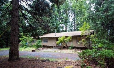 2741 Illinois Canyon Road, Georgetown, CA 95634 - MLS#: 18034952