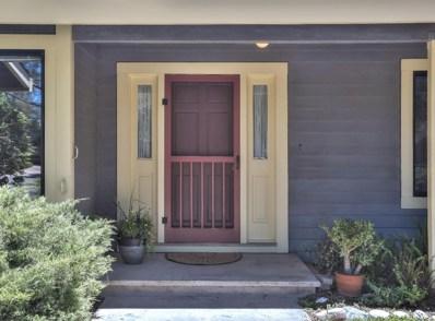 1113 Schauer Court, Walnut Grove, CA 95690 - MLS#: 18035002