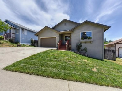 2330 Green Wing Lane, Placerville, CA 95667 - MLS#: 18035196