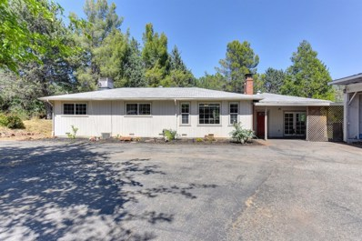 3990 Lakeview Drive, Shingle Springs, CA 95682 - MLS#: 18035388