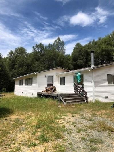16045 Mount Whitney Drive, Fiddletown, CA 95629 - MLS#: 18035411