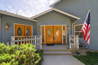 11351 Tabeaud, Pine Grove, CA 95665 - MLS#: 18035636