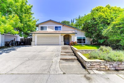 9708 Elmira Circle, Sacramento, CA 95827 - MLS#: 18036139