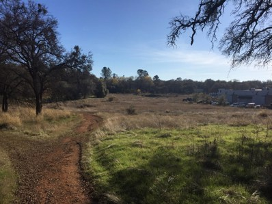 0  Business Drive, Shingle Springs, CA 95682 - MLS#: 18036225