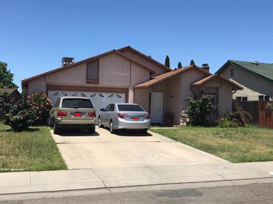 313 Berkshire Lane, Stockton, CA 95207 - MLS#: 18037265