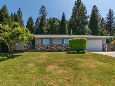 4532 Superior Drive, Camino, CA 95709 - MLS#: 18038286