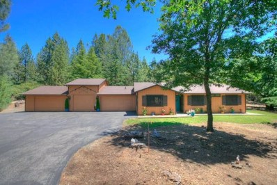 21 Edelweiss Lane, Applegate, CA 95703 - MLS#: 18038287