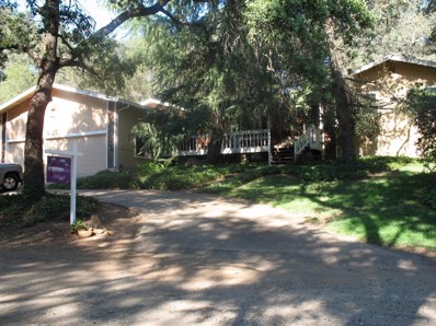 9161 Tanglewood Way, Loomis, CA 95650 - MLS#: 18038363