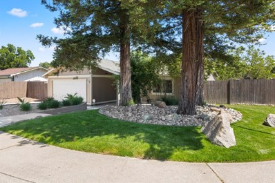 8000 Ravencrest Way, Citrus Heights, CA 95621 - MLS#: 18038696