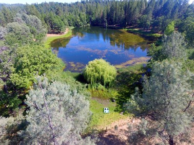 4696 Chrome Ridge Court, Placerville, CA 95667 - MLS#: 18039328