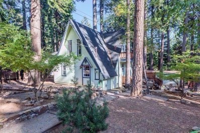 10130 Grizzly Flat Road, Grizzly Flats, CA 95636 - MLS#: 18039958