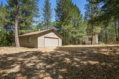 21171 Suncrest Drive, Colfax, CA 95713 - MLS#: 18040051