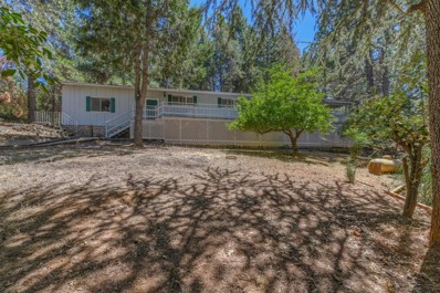 17890 Sunrise Court, Pine Grove, CA 95665 - MLS#: 18040430