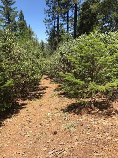 0  Parcel, Pollock Pines, CA 95726 - MLS#: 18040475