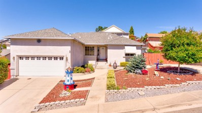 160 Arroyo Place, Jackson, CA 95642 - MLS#: 18040575