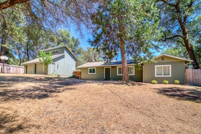6501 Morning Canyon Road, Placerville, CA 95667 - MLS#: 18040694