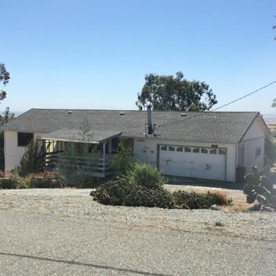 9811 Carrizo Way, La Grange Unincorp, CA 95329 - MLS#: 18040828