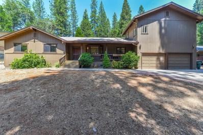 26377 Meadow Drive, Pioneer, CA 95666 - MLS#: 18041048