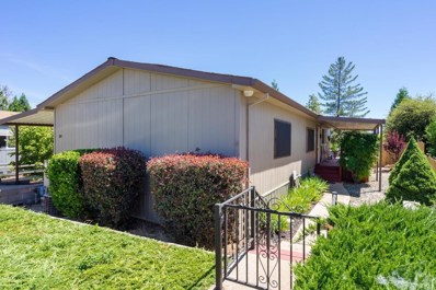 14074 Irishtown Road UNIT 58, Pine Grove, CA 95665 - MLS#: 18041398