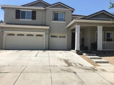 205 Daylily Lane, Patterson, CA 95363 - MLS#: 18041687
