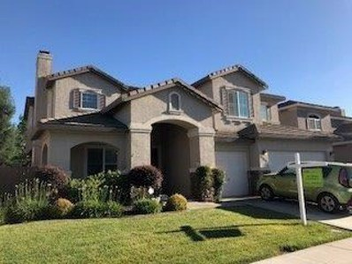9769 Mountain Vista Circle, Elk Grove, CA 95757 - MLS#: 18041750