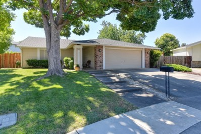 9821 Corte Dorado Court, Elk Grove, CA 95624 - MLS#: 18041778