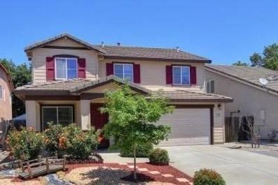 9409 Blue Falls Court, Elk Grove, CA 95624 - MLS#: 18041985