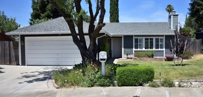 6955 Pampas Way, Fair Oaks, CA 95628 - MLS#: 18042096